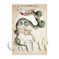 Dolls House Miniature 1820s Star Map Depicting Draco, Ursa Minor