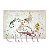 Dolls House Miniature 1820s Star Map Depicting Lacerta, Cygnus