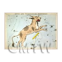 Dolls House Miniature 1820s Star Map Depicting Lynx