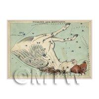 Dolls House Miniature 1820s Star Map Depicting Pegasus, Equuleus