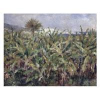Pierre Auguste Renoir Painting Field Of Banana Trees