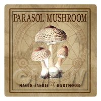 Dolls House Miniature Apothecary Parasol Mushroom Colour Label