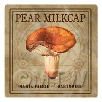 Dolls House Miniature Apothecary Pear Milkcap Fungi Colour Box Label