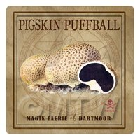 Dolls House Miniature Apothecary Pigskin Puffball Box Colour Label
