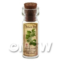 Dolls House Apothecary Poison Ivy Herb Short Colour Label And Bottle