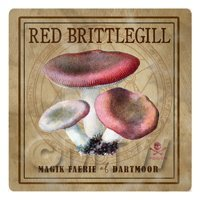 Dolls House Miniature Apothecary Red Brittlegill Fungi Colour Box Label