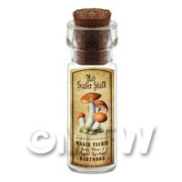 Dolls House Apothecary Red Scaber Stalk Fungi Bottle And Colour Label
