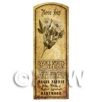 Dolls House Herbalist/Apothecary Rose Hip Herb Long Sepia Label