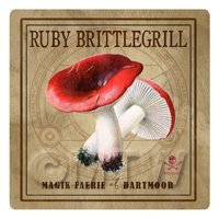 Dolls House Miniature Apothecary Ruby Brittlegill Fungi Colour Box Label