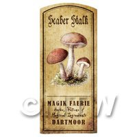 Dolls House Miniature Apothecary Scaber Stalk Fungi Colour Label