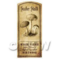 Dolls House Miniature Apothecary Scaber Stalk Fungi Label
