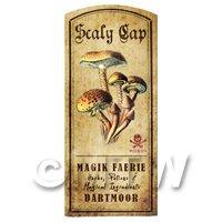 Dolls House Miniature Apothecary Scaly Cap Fungi Colour Label