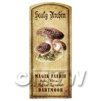 Dolls House Miniature Apothecary Scaly Urchin Fungi Colour Label
