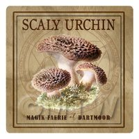 Dolls House Miniature Apothecary Scaly Urchin Fungi Colour Box Label
