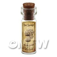 Dolls House Apothecary Sea Sponge Fungi Bottle And Colour Label
