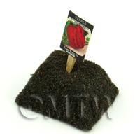 Dolls House Miniature Sweet Pepper Seed Packet With A Stick