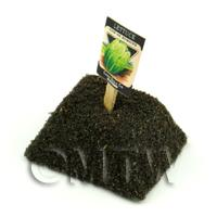 Dolls House Miniature Romaine Lettuce Seed Packet With A Stick