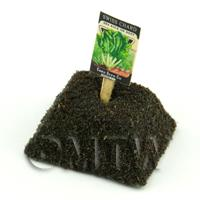 Dolls House Miniature Swiss Chard Seed Packet With A Stick