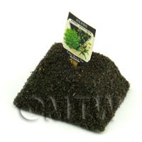 Dolls House Miniature Sweet Marjoram Seed Packet With A Stick