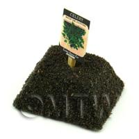 Dolls House Miniature Soup Celery Seed Packet With A Stick