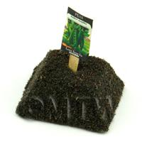 Dolls House Miniature Alaska Peas Seed Packet With A Stick