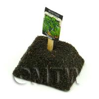 Dolls House Miniature Giant Radish Seed Packet With A Stick