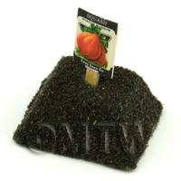 Dolls House Miniature Boston Squash Seed Packet With A Stick