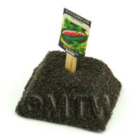 Dolls House Miniature Watermelon Seed Packet With A Stick