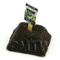 Dolls House Miniature Purple Kohl Rabi Seed Packet With A Stick