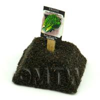Dolls House Miniature Endive Seed Packet With A Stick