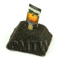 Dolls House Miniature Pumpkin Seed Packet With A Stick