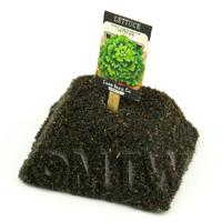 Dolls House Miniature Lattuga Lettuce Seed Packet With A Stick