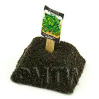 Dolls House Miniature Simpson Lettuce Seed Packet With A Stick