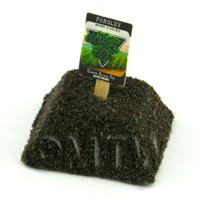 Dolls House Miniature Moss Curled Parsley Seed Packet With A Stick