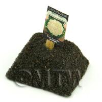 Dolls House Miniature - Dolls House Miniature Paris Cauliflower Seed Packet With A Stick