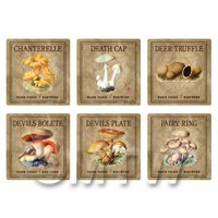 Dolls House Miniature Apothecary Fungi Square Colour Box Label Set 2