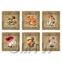 Dolls House Miniature Apothecary Fungi Square Colour Box Label Set 7