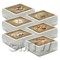 Dolls House Miniature Apothecary Fungi Square Colour Box Set 8