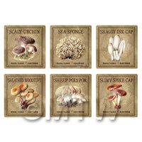 Dolls House Miniature Apothecary Fungi Square Colour Box Label Set 8