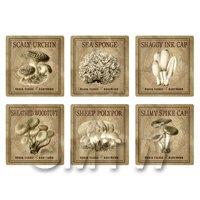 Dolls House Miniature Apothecary Fungi Square Sepia Box Label Set 8