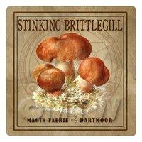 Dolls House Miniature Apothecary Stinking Brittlegill Fungi Colour Box Label