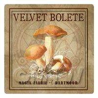 Dolls House Miniature Apothecary Velvet Bolete Fungi Colour Box Label