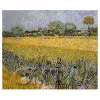 Van Gogh Painting View of Arles With Irises in Foreground