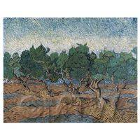 Van Gogh Painting Olive Orchard