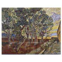 Van Gogh Painting A Corner of Saint-Pauls Hospital