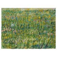 Van Gogh Painting Patch of Grass