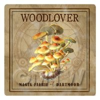 Dolls House Miniature Apothecary Woodlover Fungi Colour Box Label