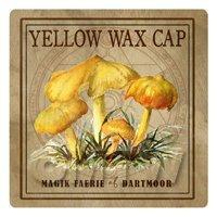 Dolls House Miniature Apothecary Yellow Wax Cap Fungi Colour Box Label