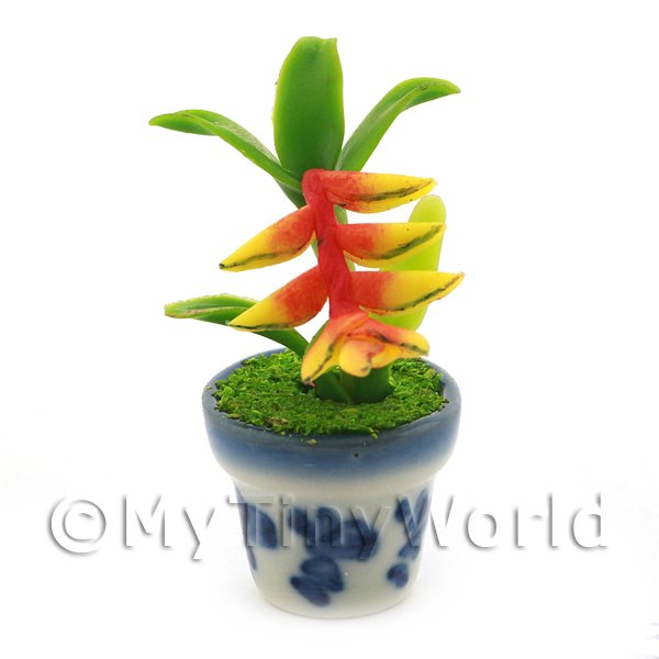 Dolls House Miniature Birds of Paradise