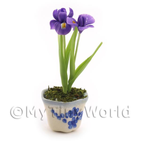 Dolls House Miniature Purple Iris